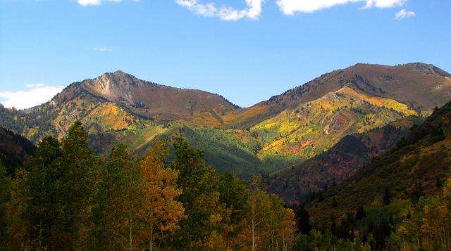 Fall Foliage Drives